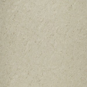 Double charge Vitrified Pearl Biscuit