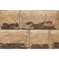 300x450 mm Elevation Wall Tile - ELE Topica-06