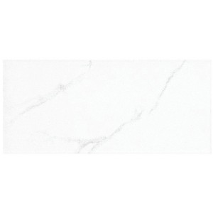 * Imported designer wall tile 300x600mm - 593 Light
