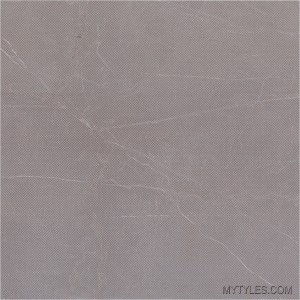* 300x300mm Antiskid Ceramic Floor Tile - IP 151 D F