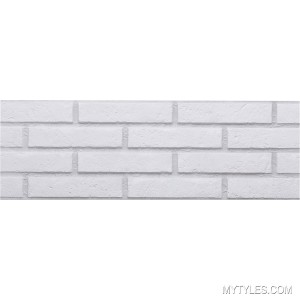 Imported Brick Tile Ascot  Blanco 200x600 mm