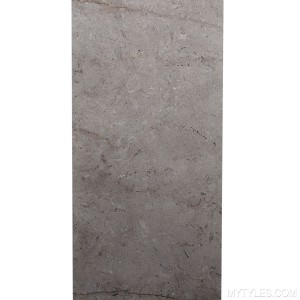 *Polish Glazed Vitrified Tile - 800x1600mm - GVT IP Ceppo De Camel