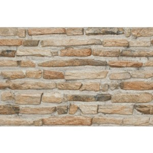300x450 mm Elevation Wall Tile - ELE Nexa-06