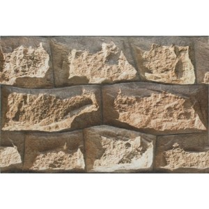 300x450 mm Elevation Wall Tile - ELE Sumo-06